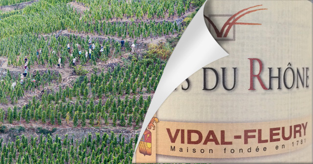 2013er Vidal-Fleury Côtes du Rhône Rouge